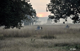 Kaziranga am Morgen