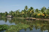 Backwaters in Indien