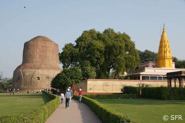 Damek Stupa in Sarnath